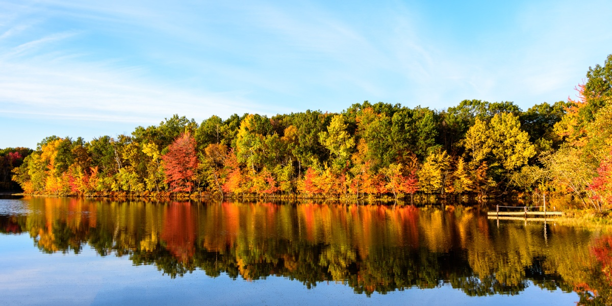 Fall Foliage Prediction Maps